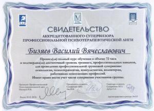 Бизяев Василий Вясеславович